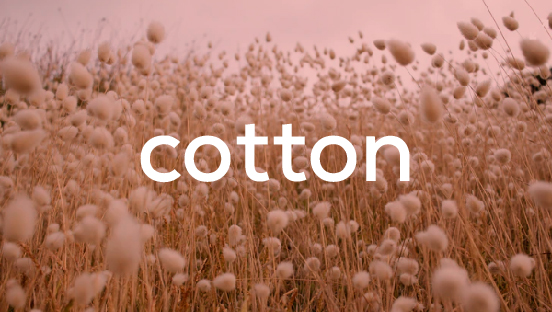 About Cotton